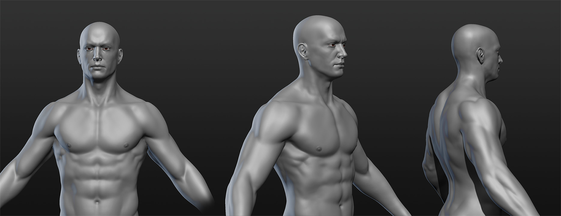 Stefan polster torso