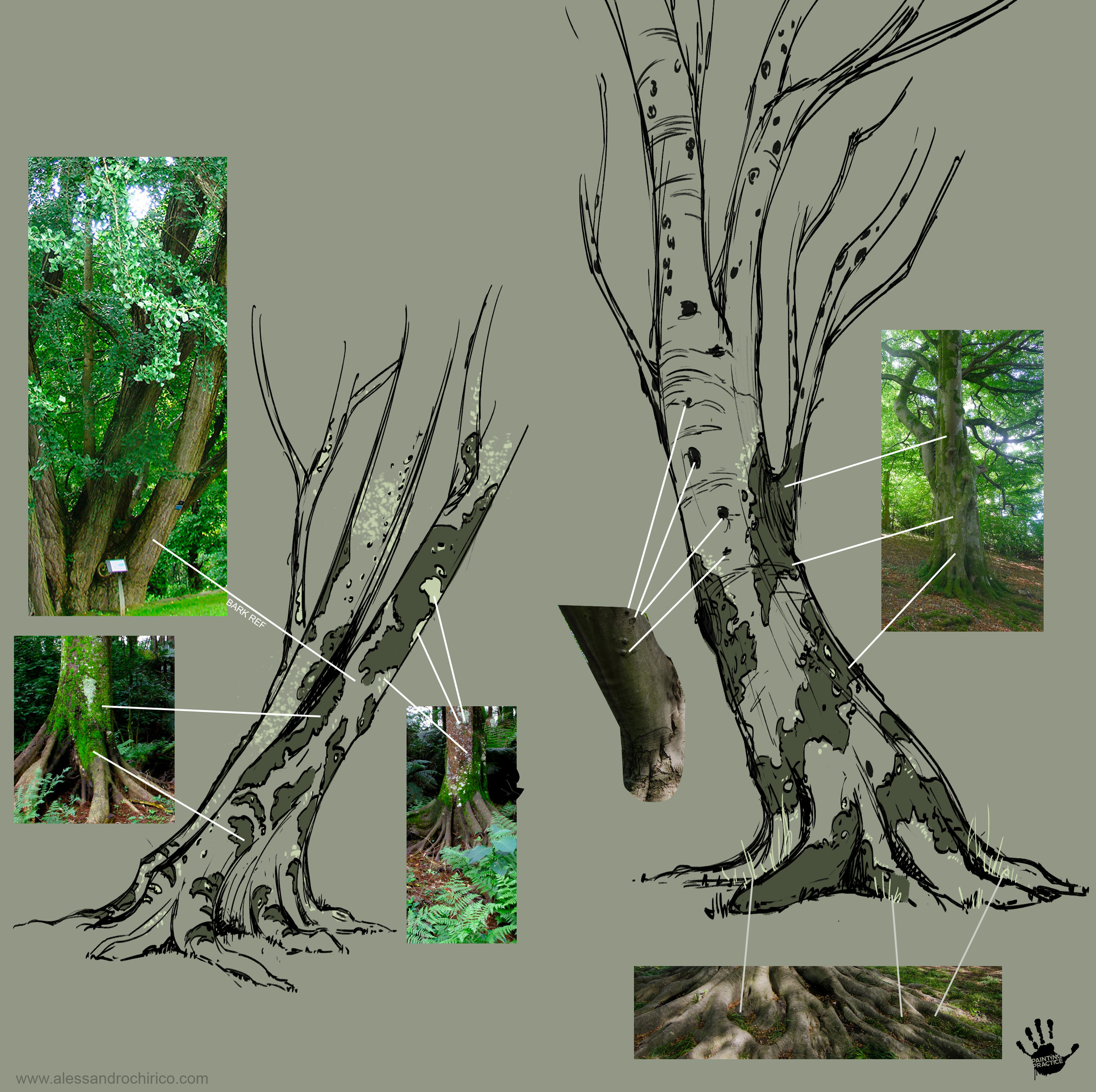 Layout for some of the trees