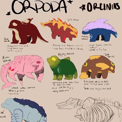 orpoda