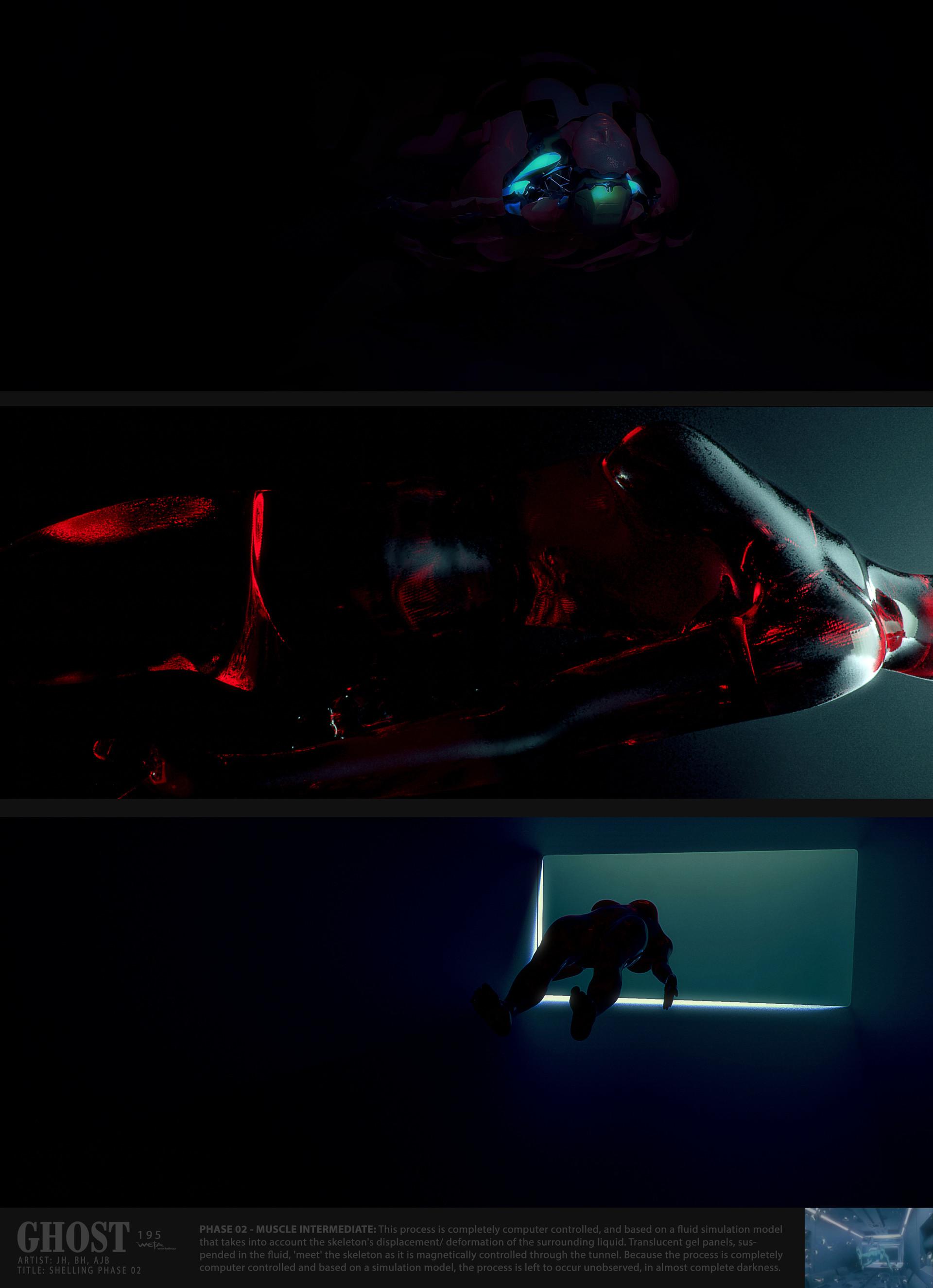 Muscle Intermediate - Artists: Jeremy Hanna + Andrew Baker