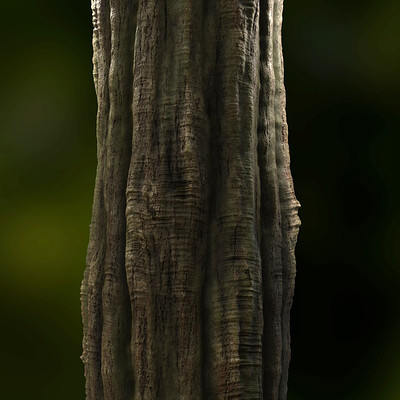 Joakim stigsson treetrunk 02