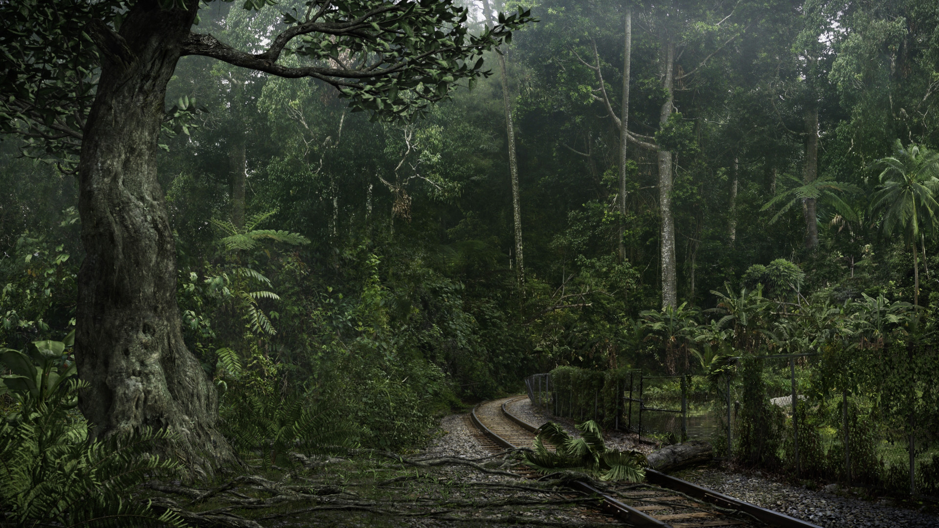Tamas csordas forest
