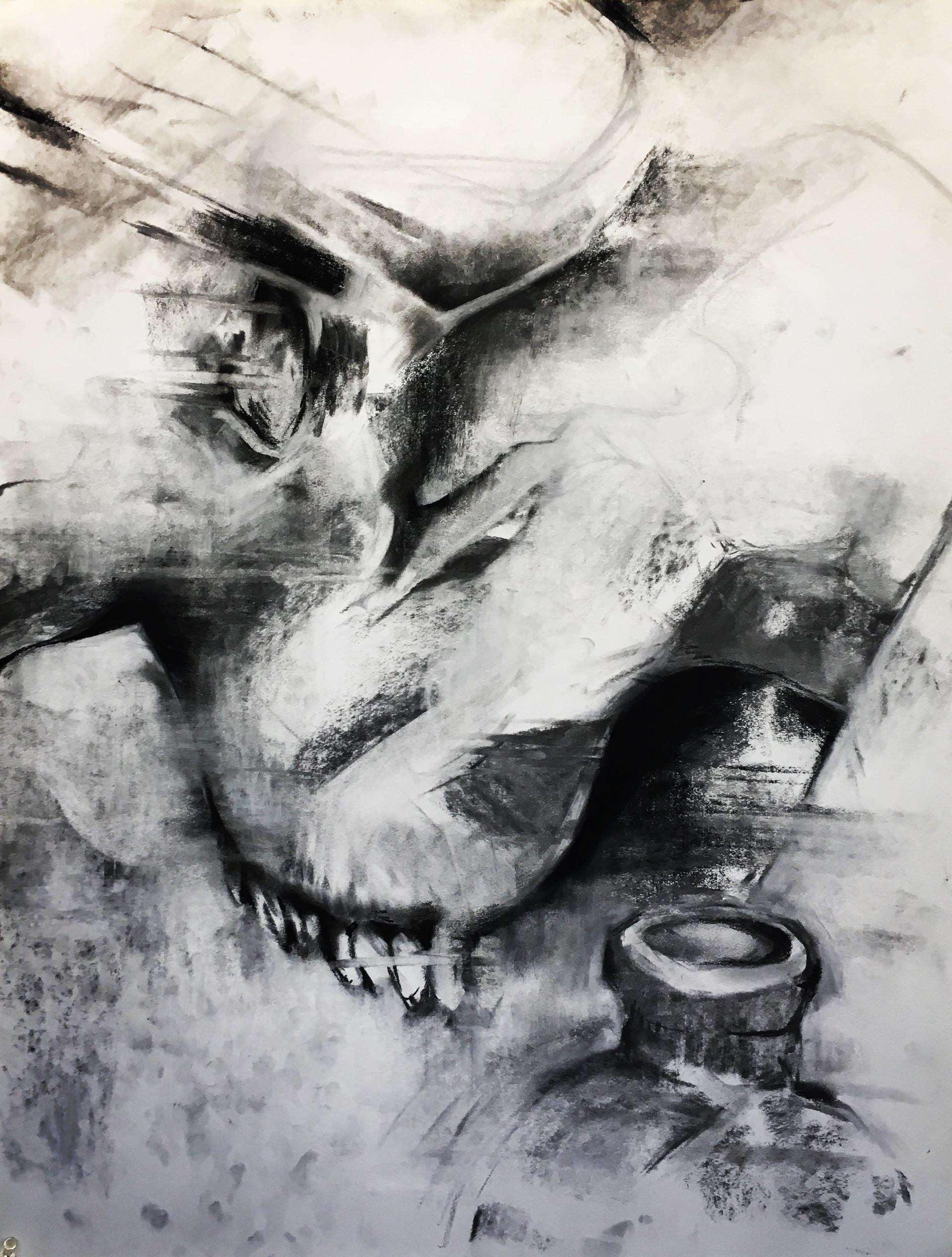"""Skull Study"" | Charocal on Tagboard"
