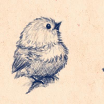 Okan bulbul cuute birds01