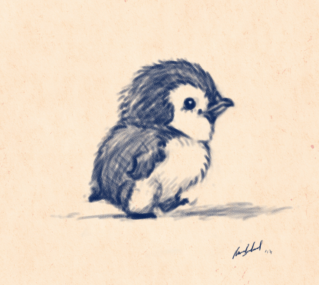 Okan bulbul penguin walking01