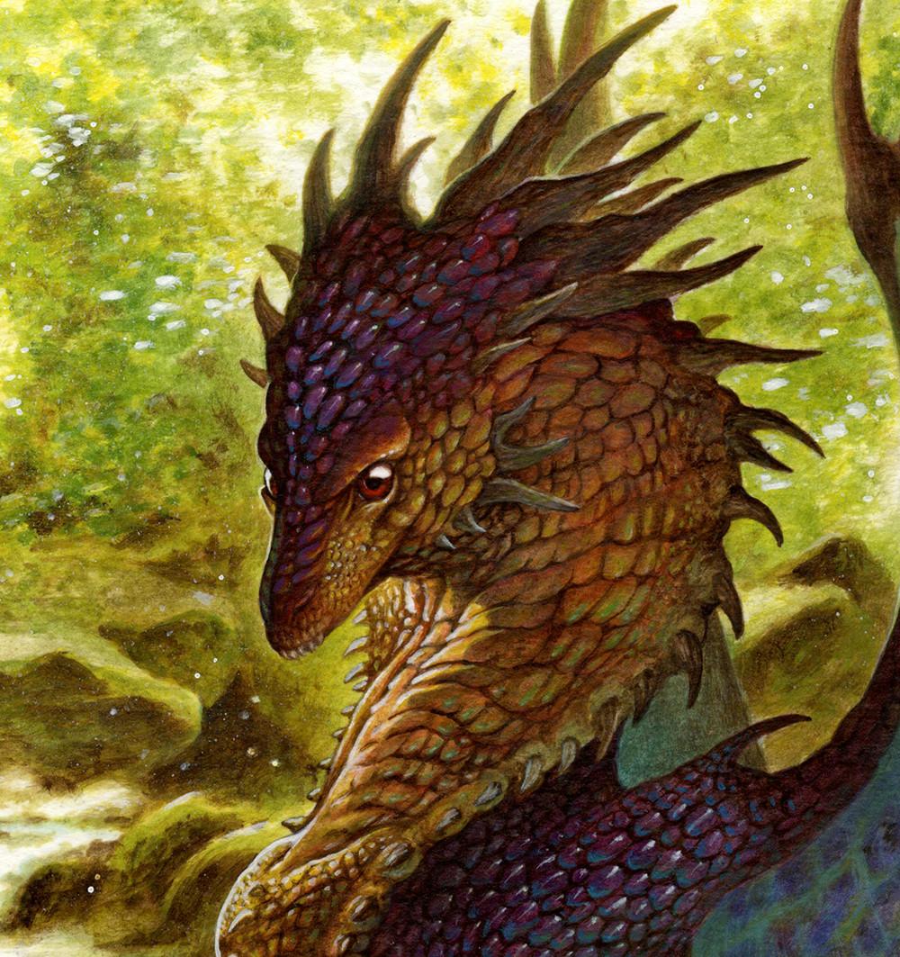 Loic canavaggia mere des dragons 0