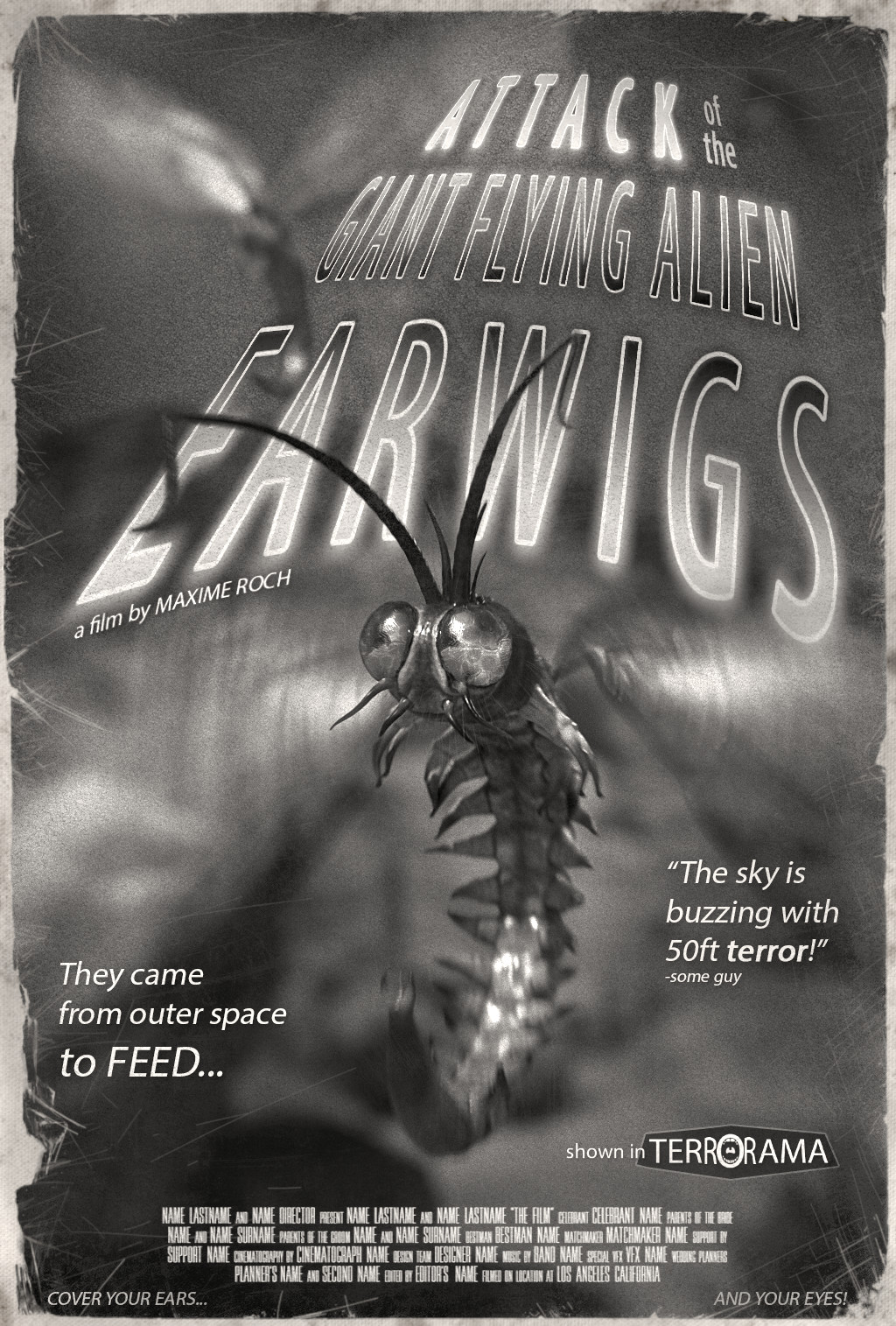 Maxime roch flying insects movie poster v005