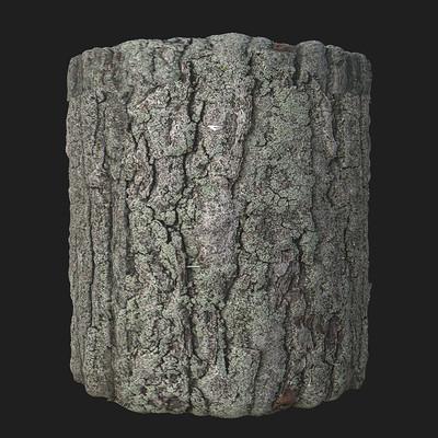 Lichen Wood