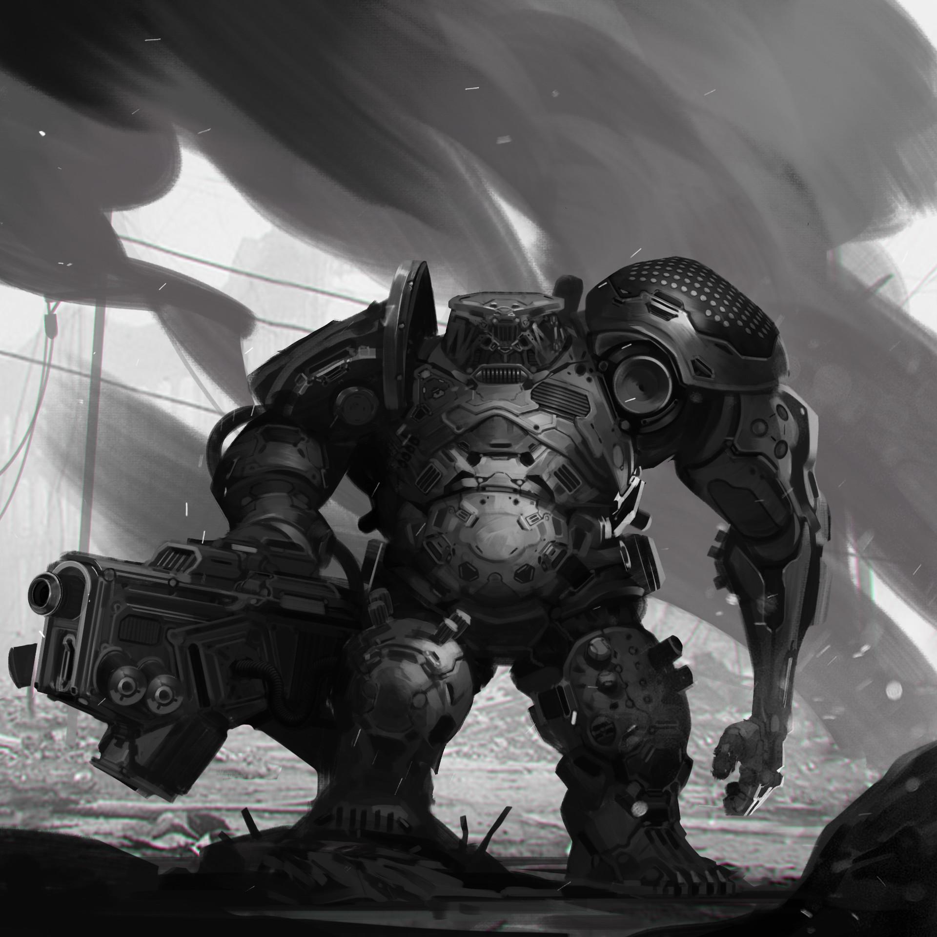 Dusko bjeljac robo