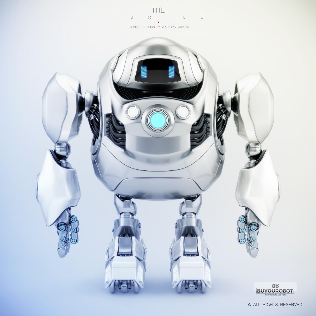 Vladislav ociacia cyber turtle robot 1