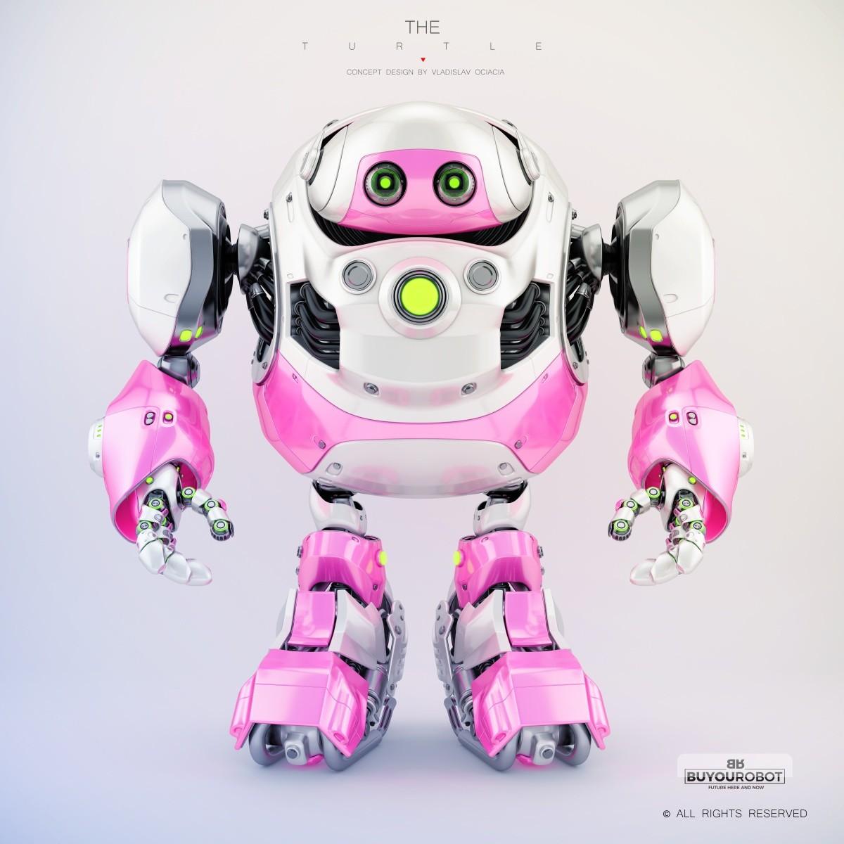 Vladislav ociacia cyber turtle robot 11