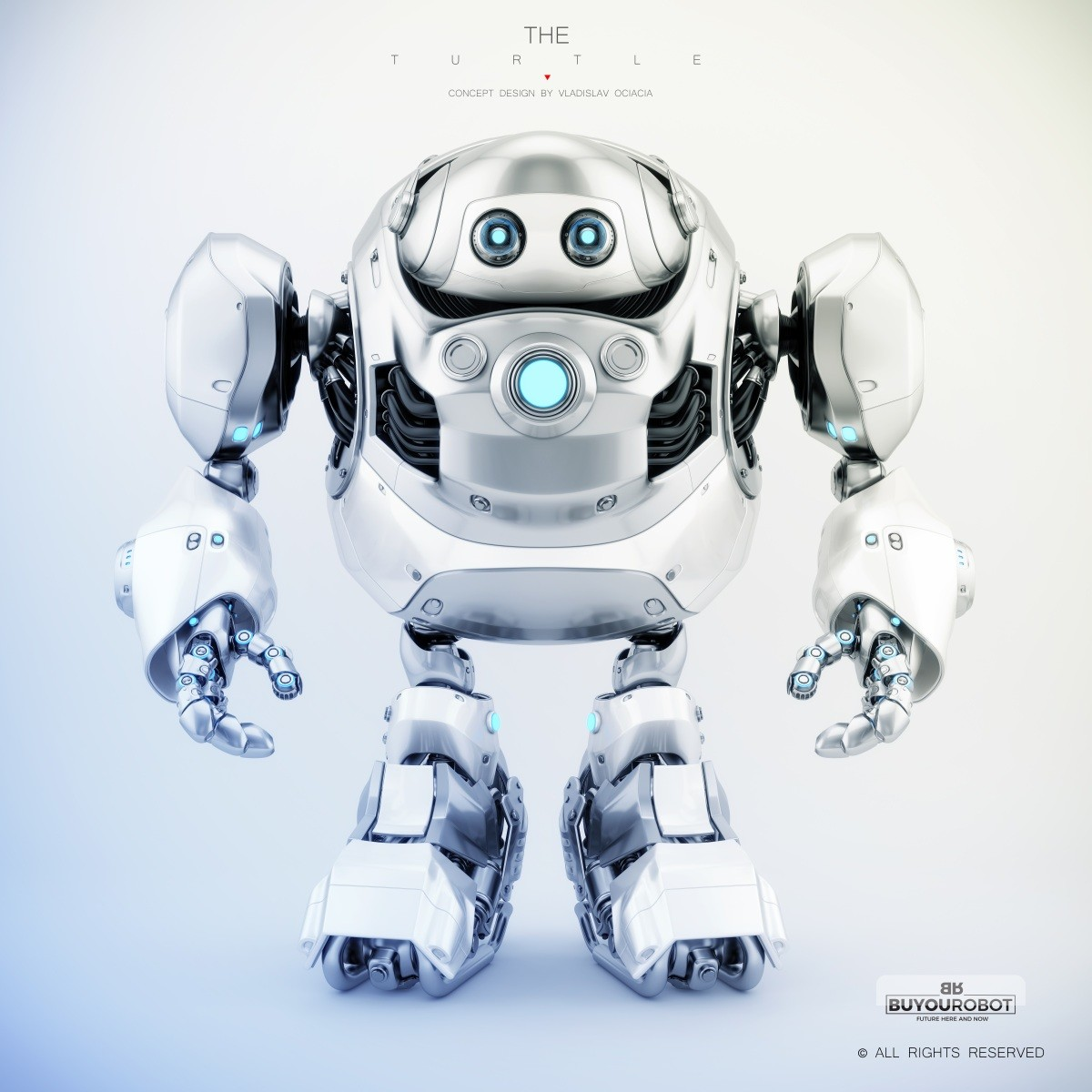 Vladislav ociacia cyber turtle robot 2