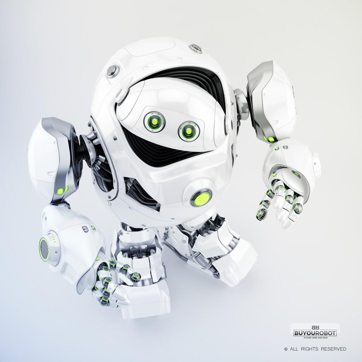 Vladislav ociacia cyber turtle robot 13