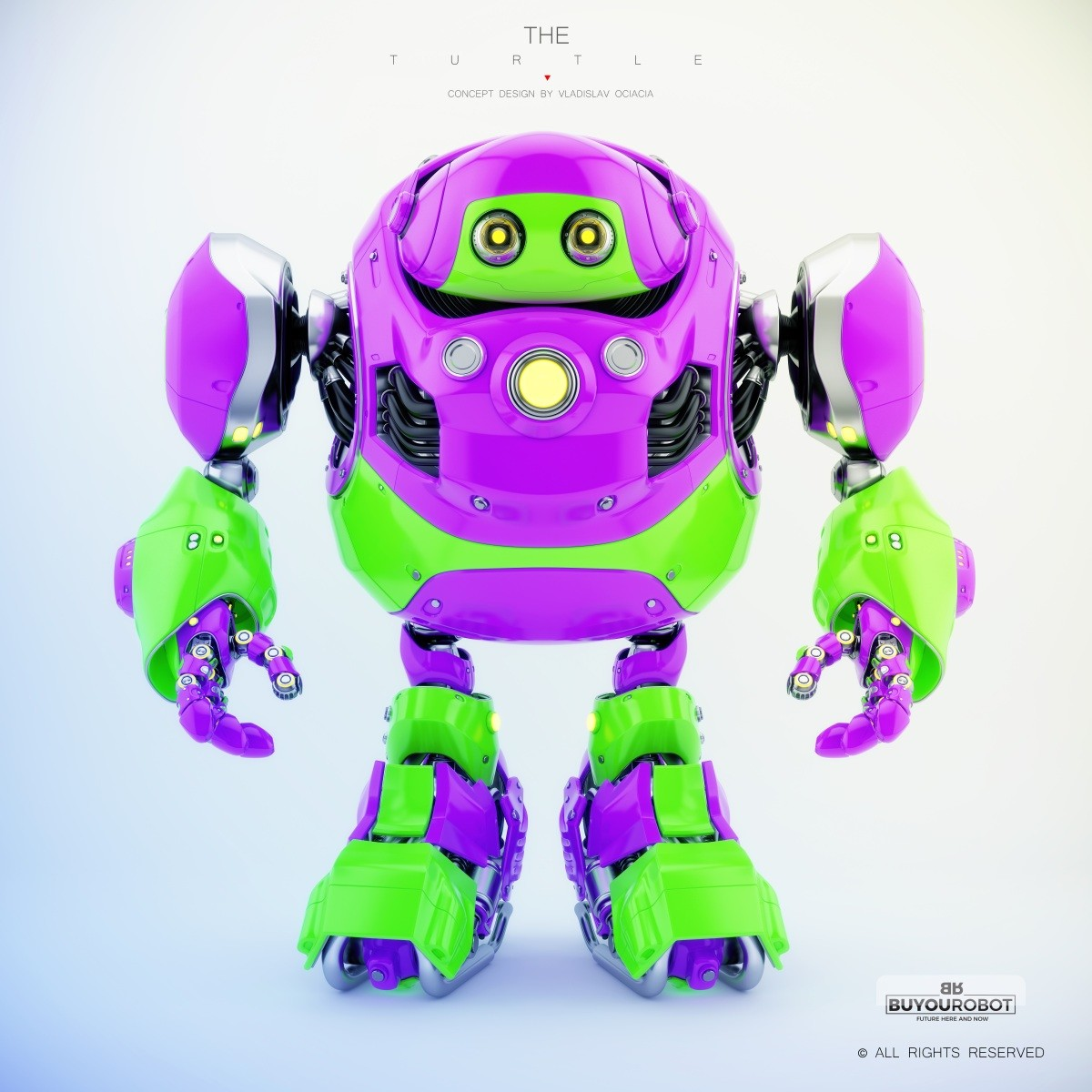 Vladislav ociacia cyber turtle robot 15