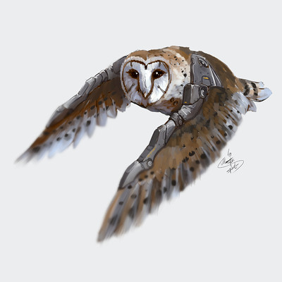 Oleg tsoy augmented owls 02