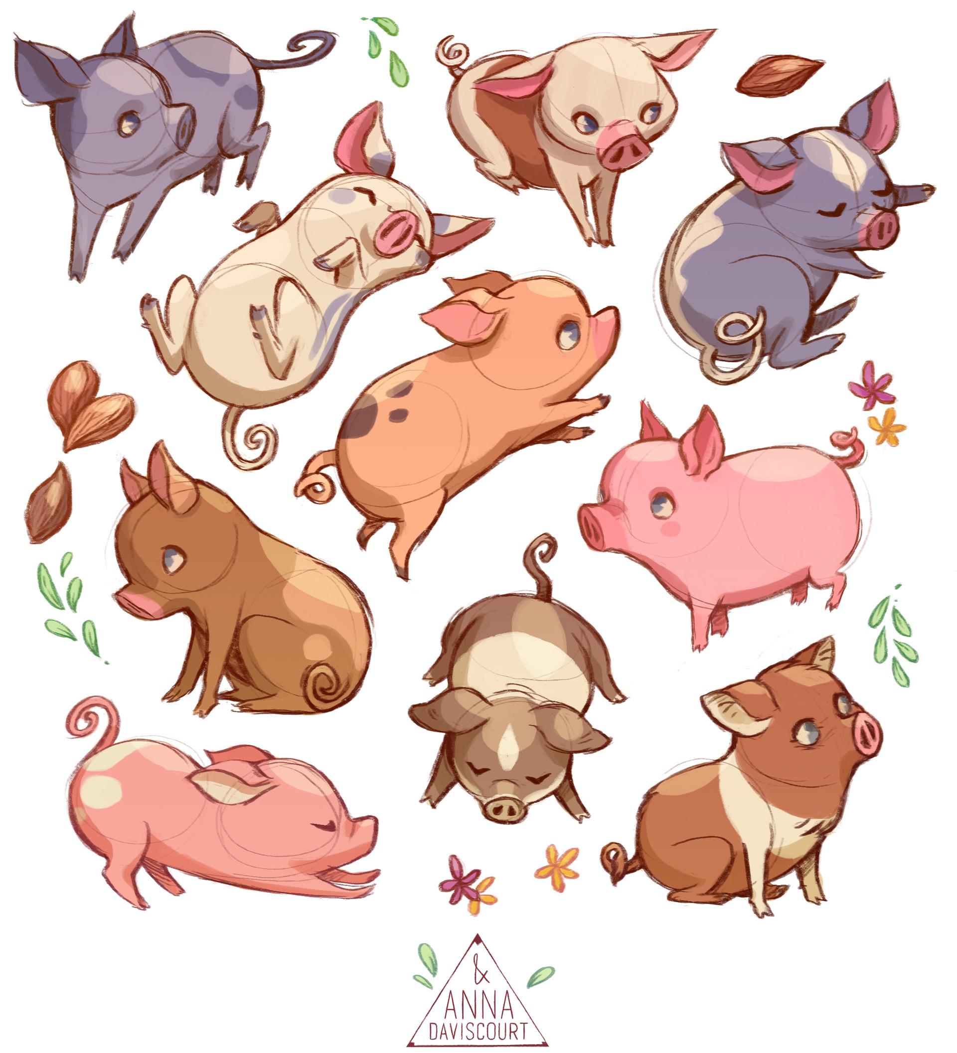 Anna daviscourt pigs1