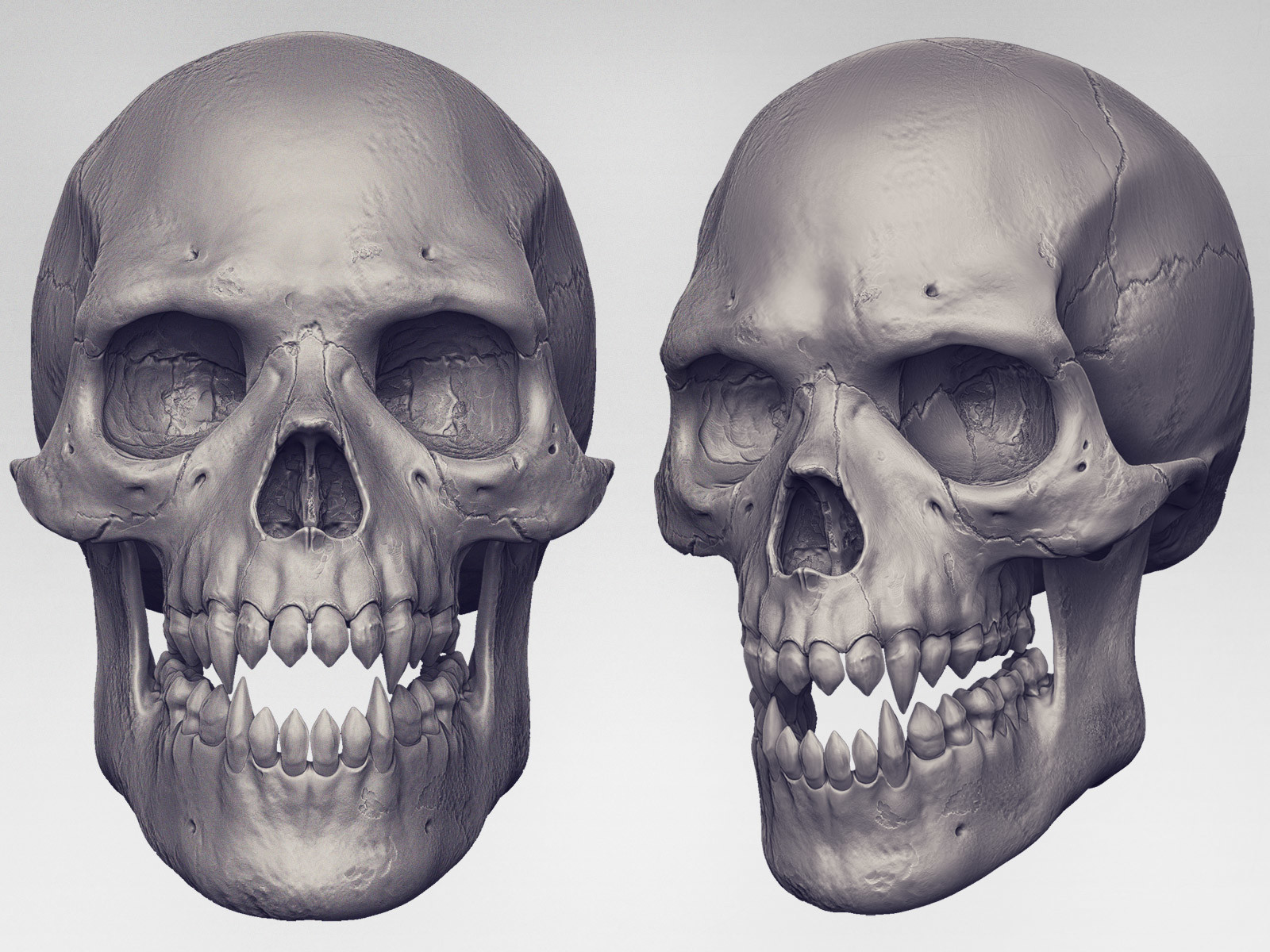 Mashru mishu skull r