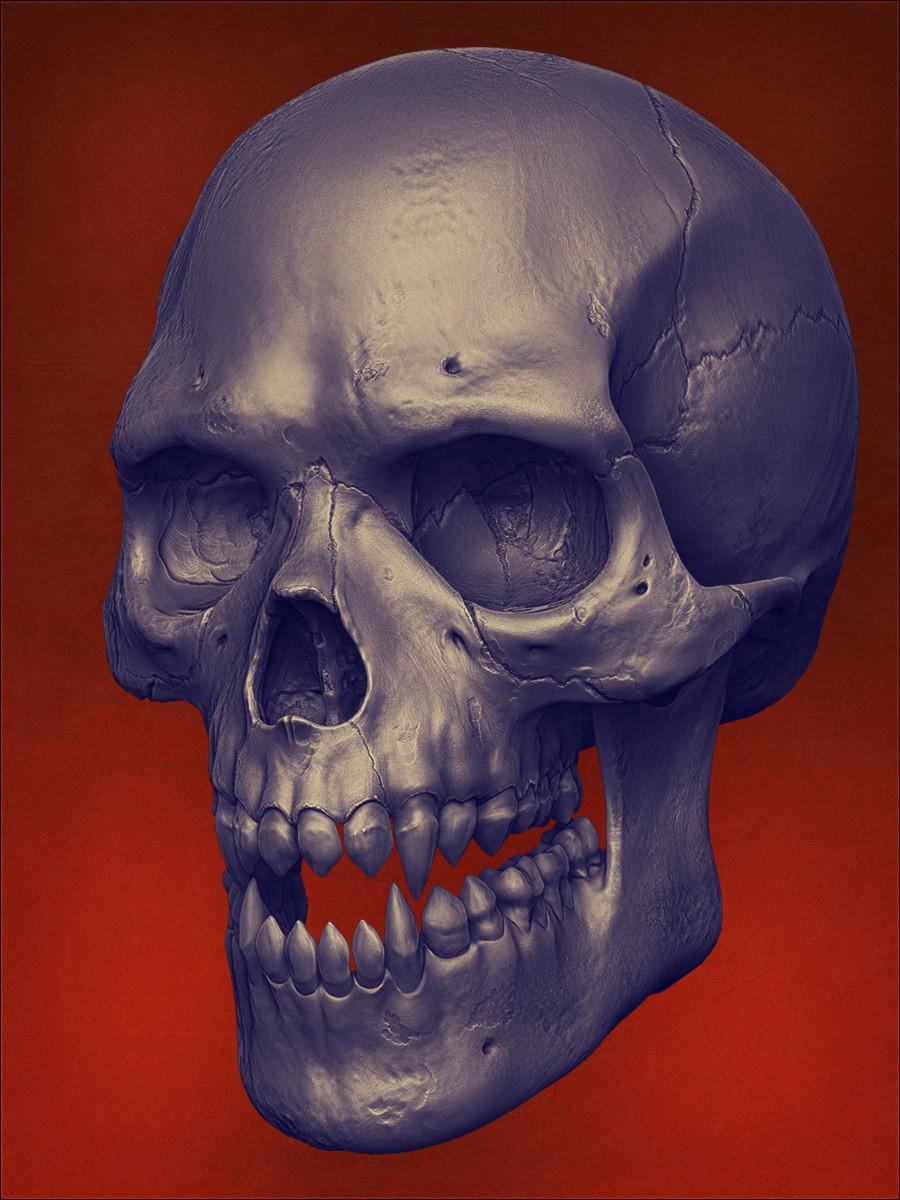 Mashru mishu skull r2