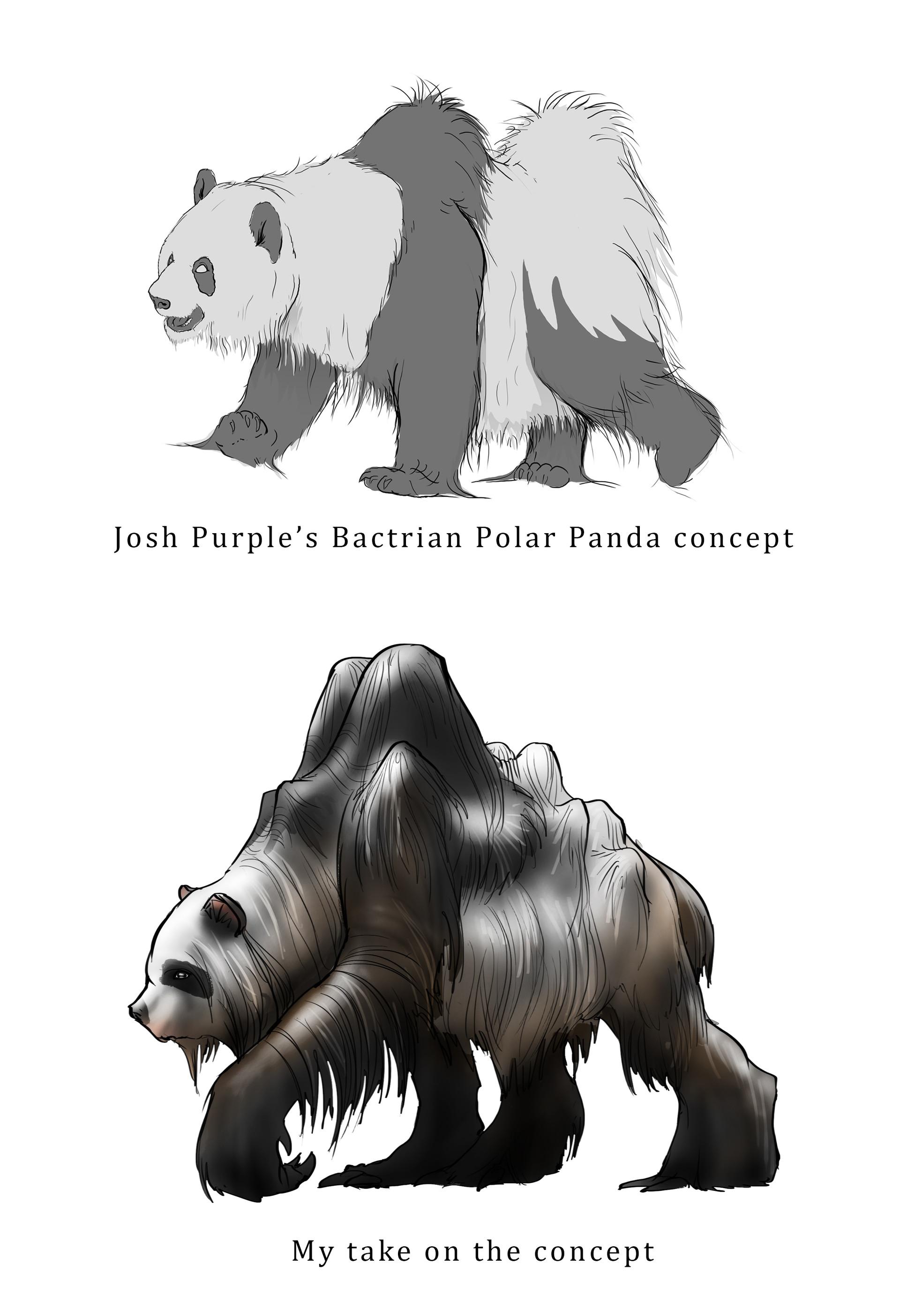 Midhat kapetanovic polar bactrian panda