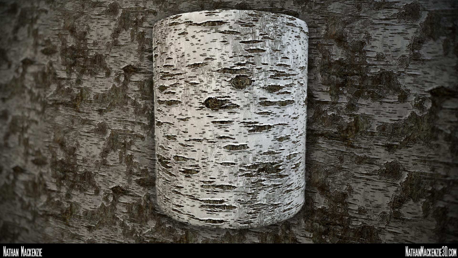 Nathan mackenzie birch bark