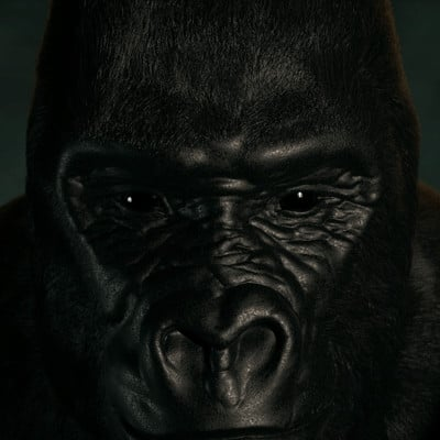 Andre bengtsson gorillawip3