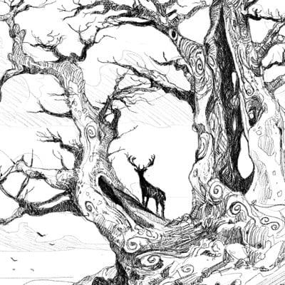 Raphael lacoste arbre2