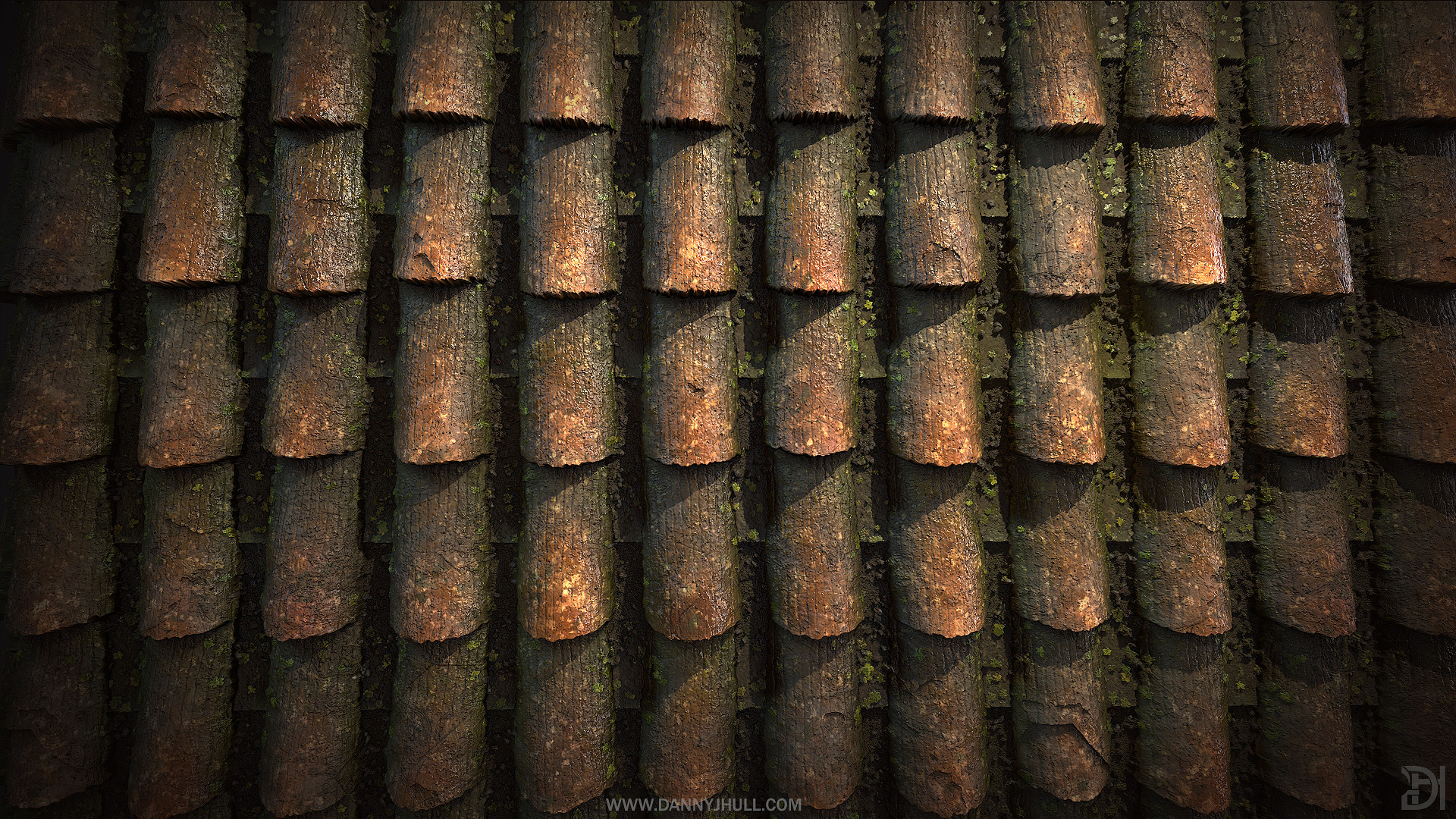 Daniel hull roof tile close up
