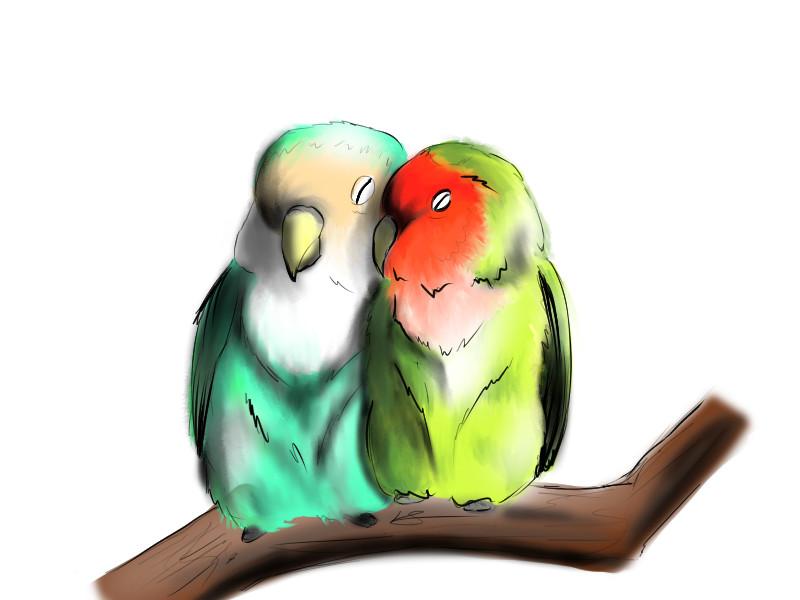 Artstation Love Birds Louise Sansom