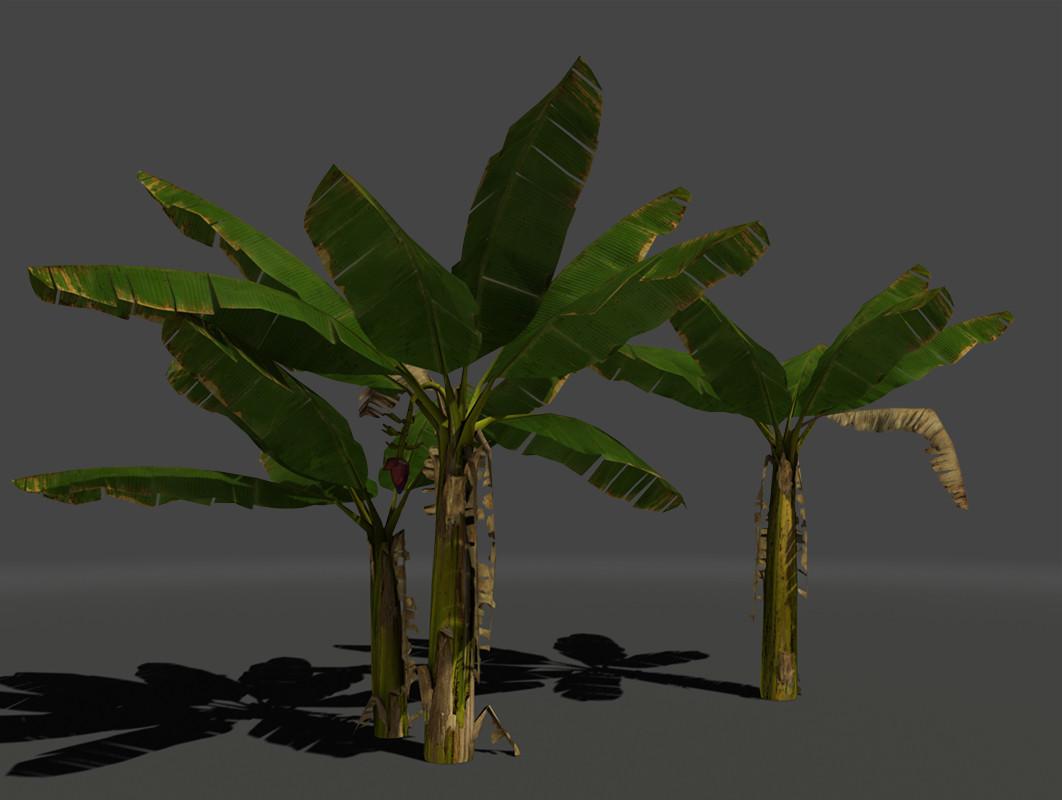 Jeremy h brown bananatreeswide02
