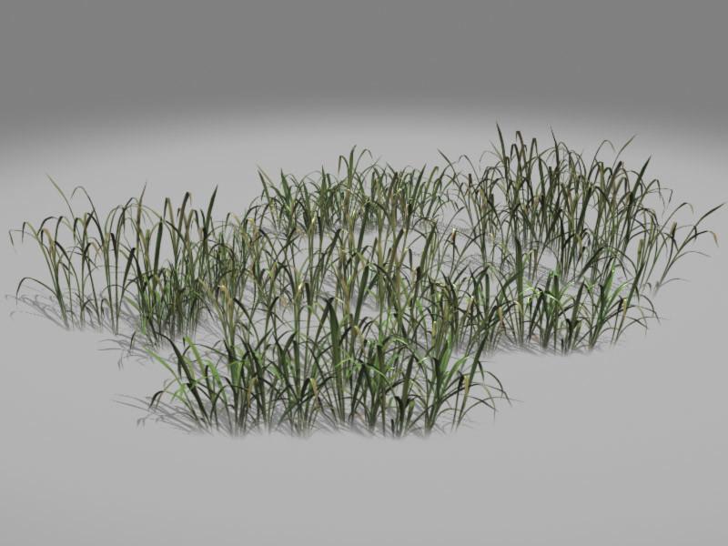 Jeremy h brown grass render 01