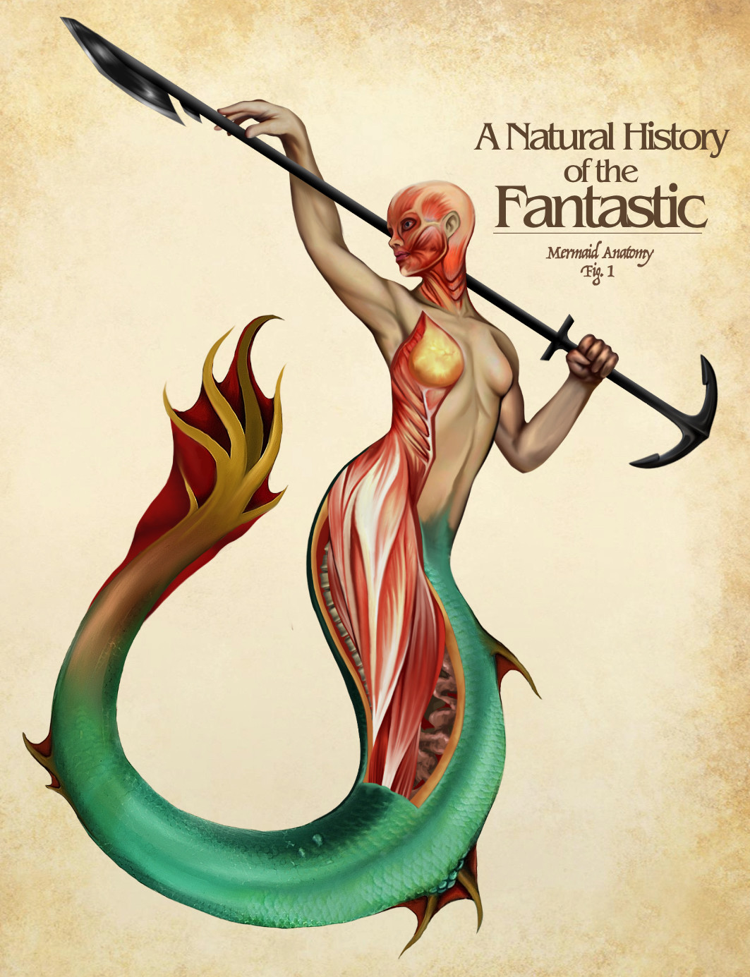 ArtStation - A Natural History of the Fantastic, Christopher Stoll