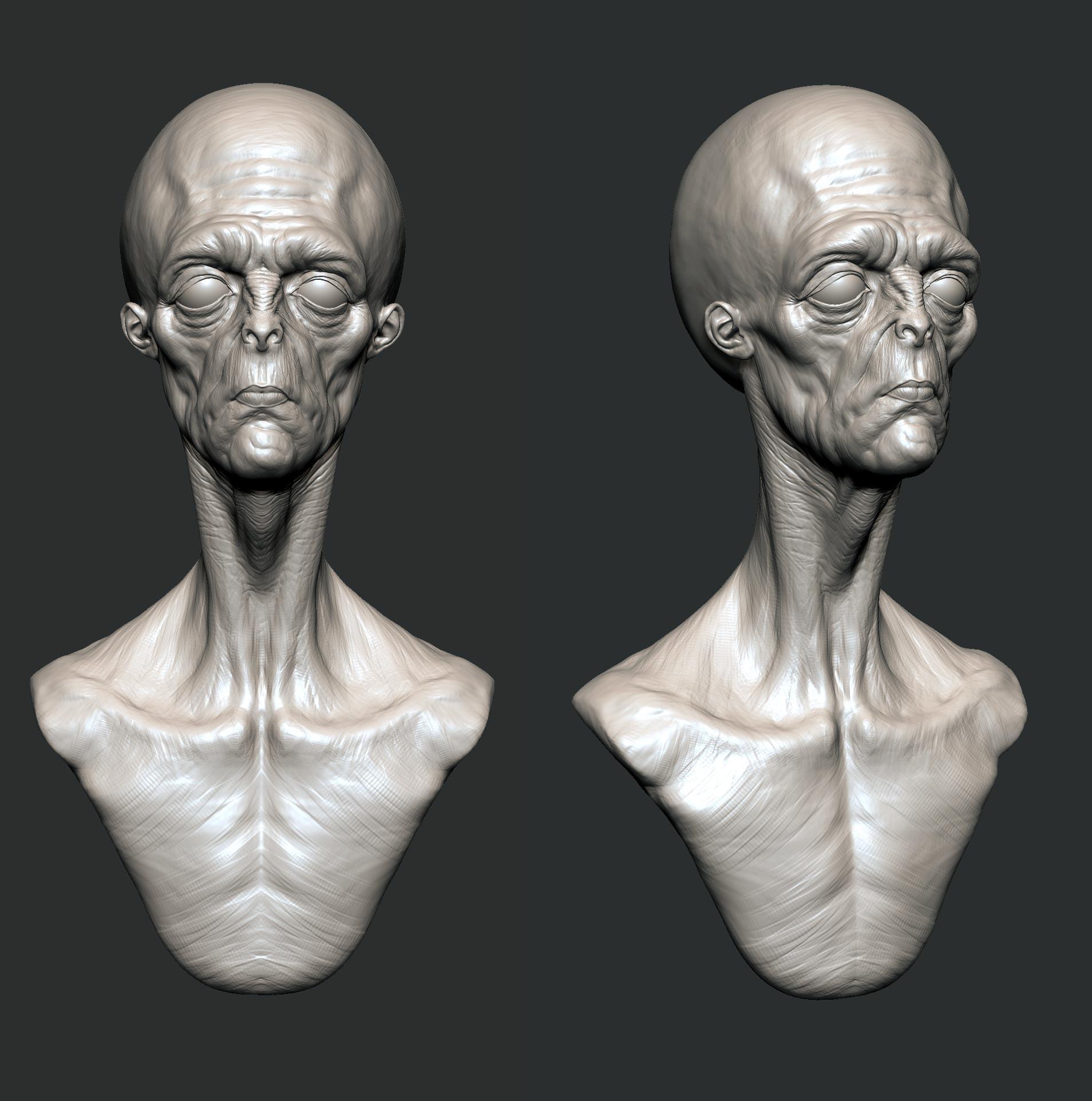 Andre de souza alien bust zbrush