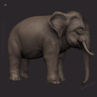 Surajit sen asian elephant rnd surajitsen 09052017
