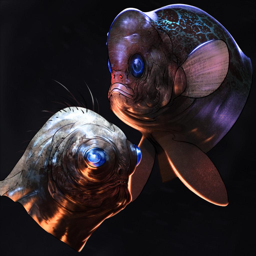 Dusko bjeljac fishface finito