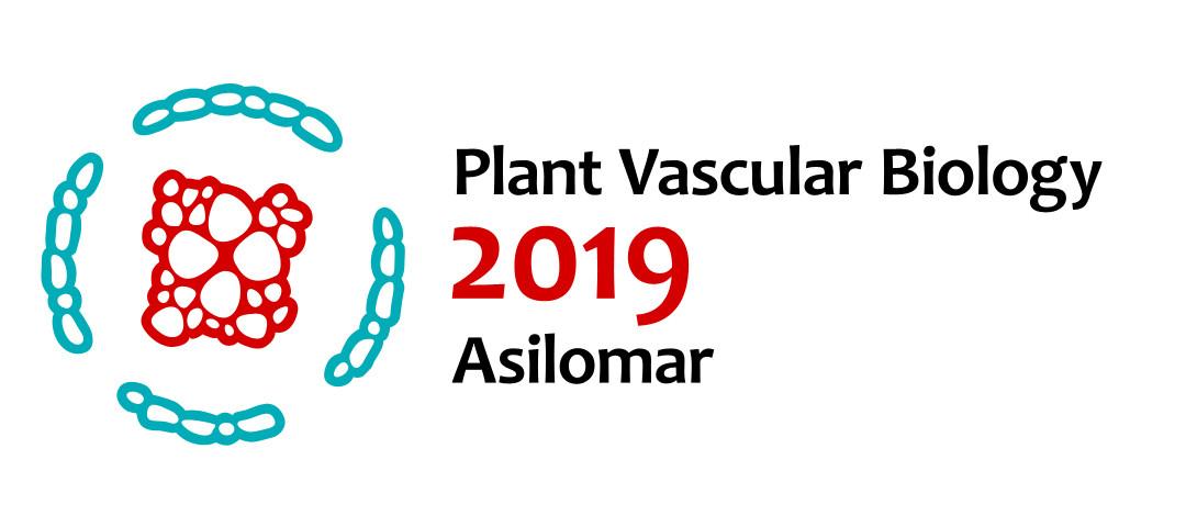 Peggy Muddles - Plant Vascular Biology conference logo concepts