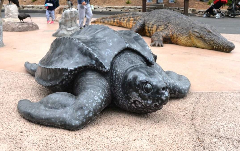 Artstation leatherback sea turtle sf zoo rey hernandez