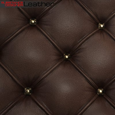 Kevin douglas leather beauty cu