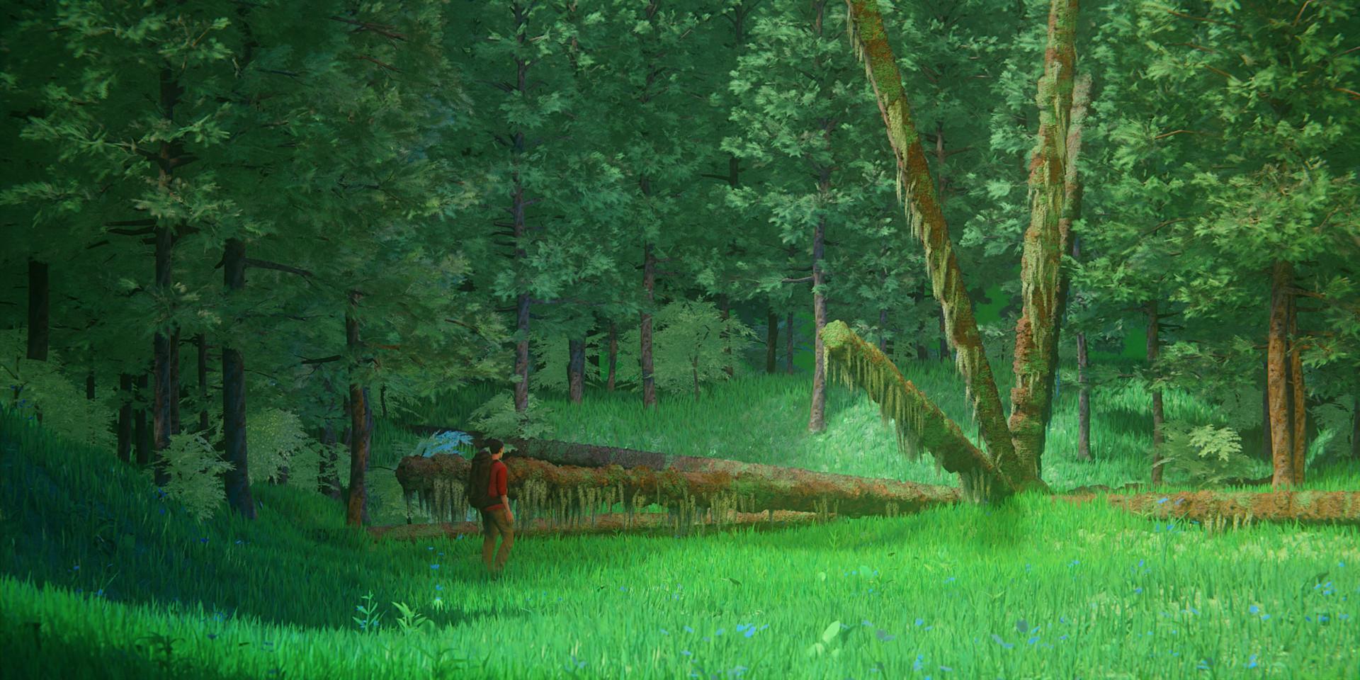 Harrison magby vibrantforest finaledit