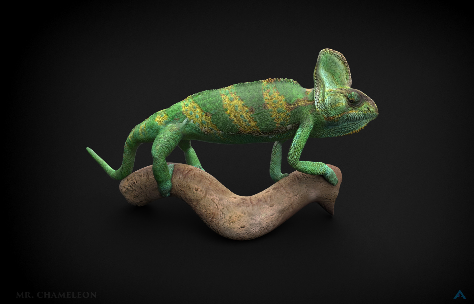 How to disable the chameleon on the bileine
