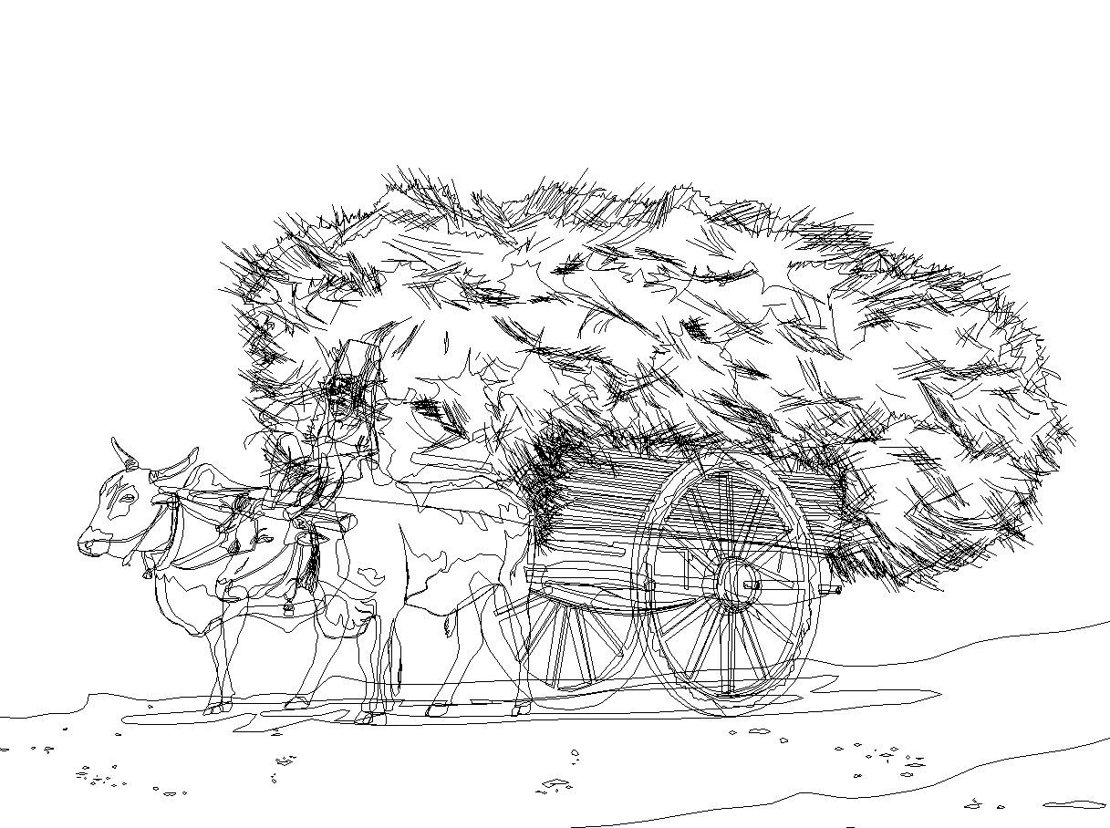 Rajesh sawant bullock cart konkan wire frame