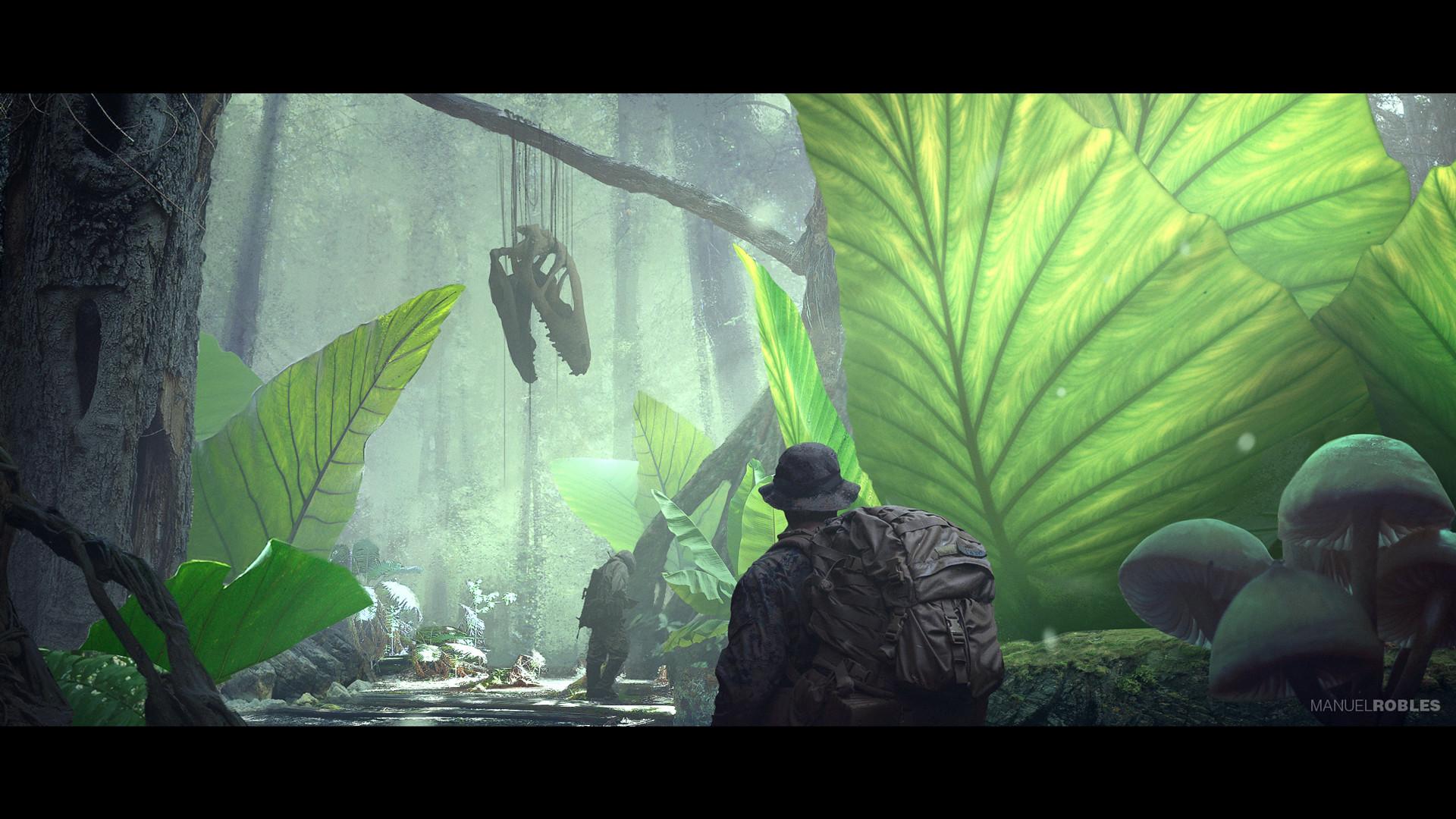 Manuel robles rainforest 02