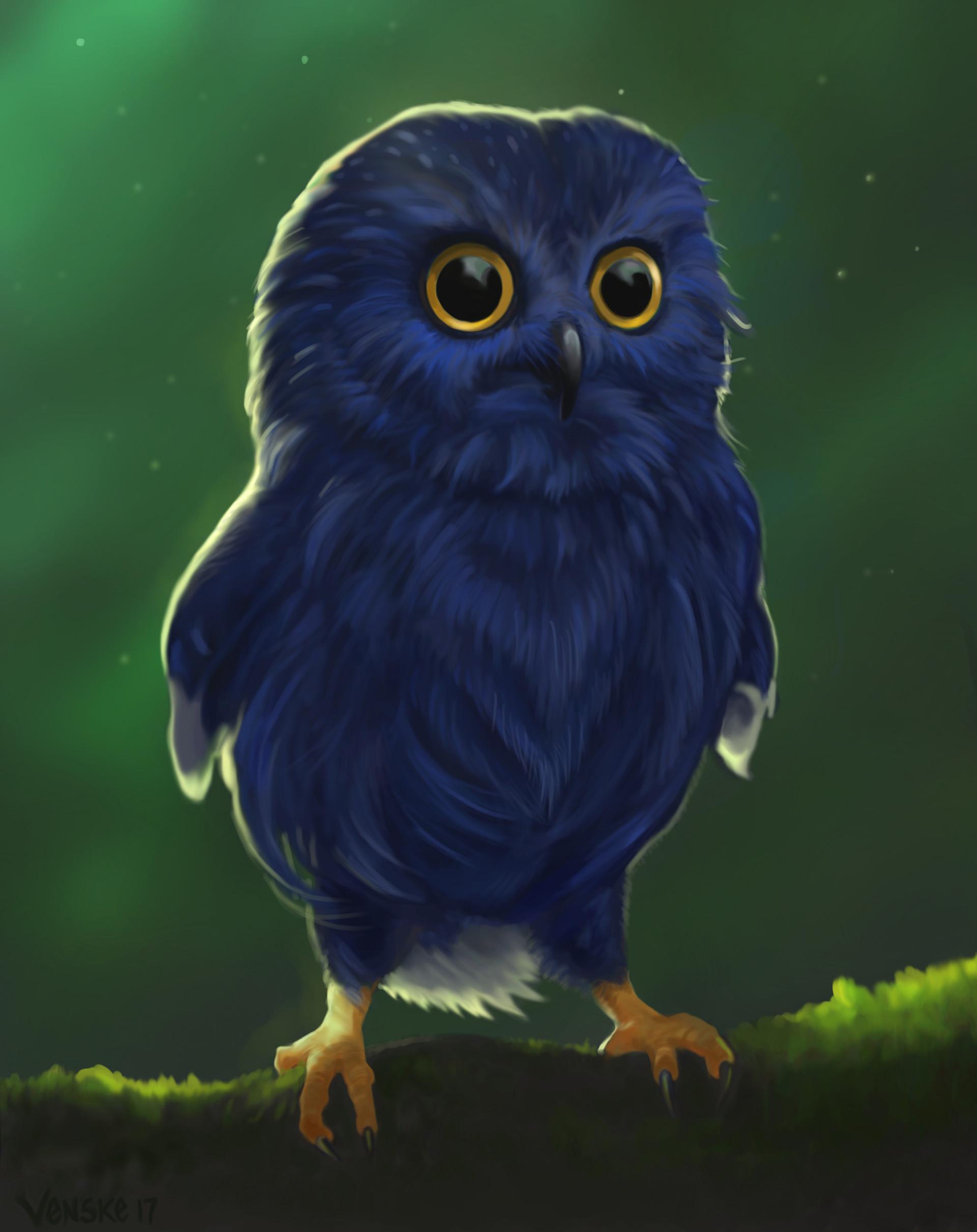 Синяя сова картинки