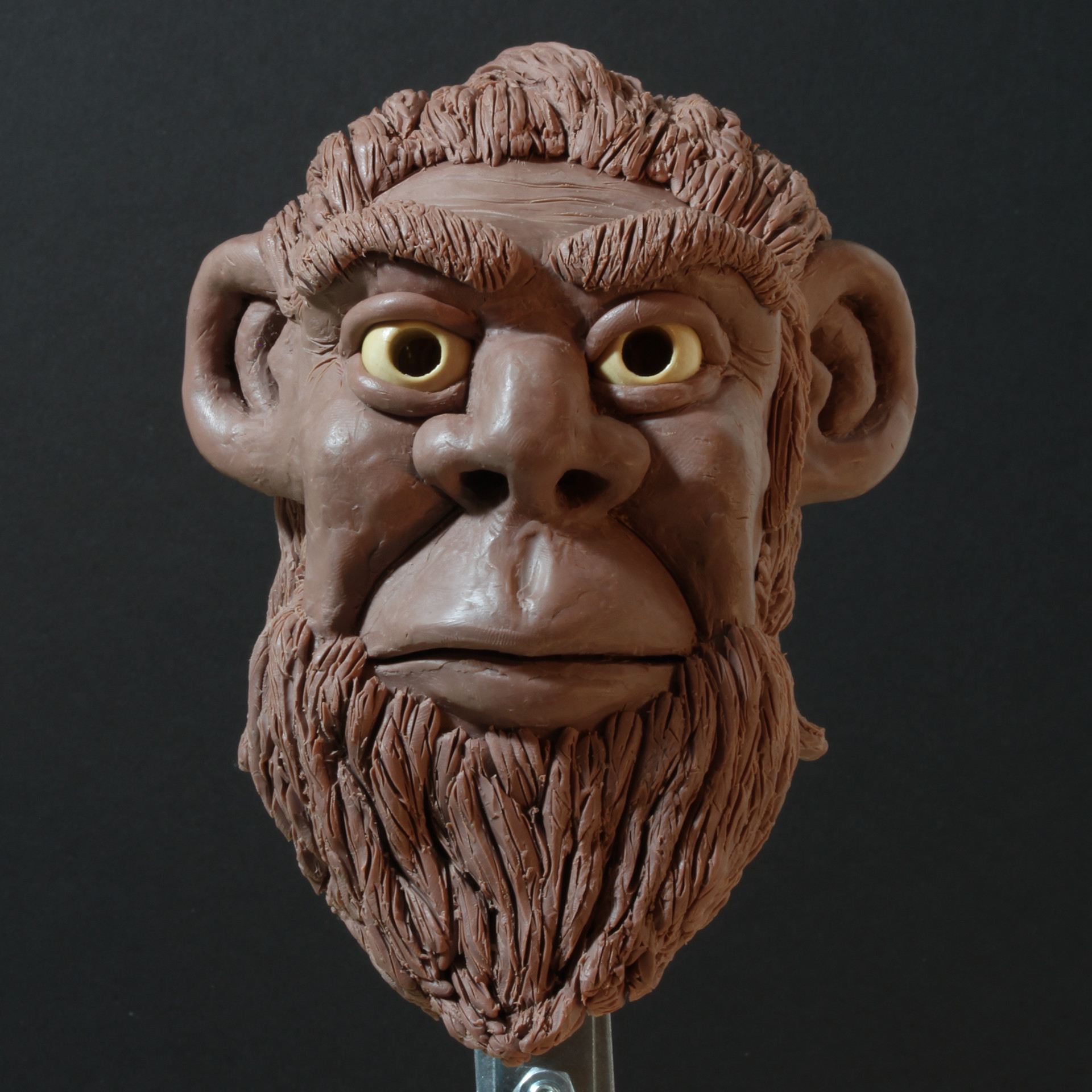 Rob mcdaniel caveman front