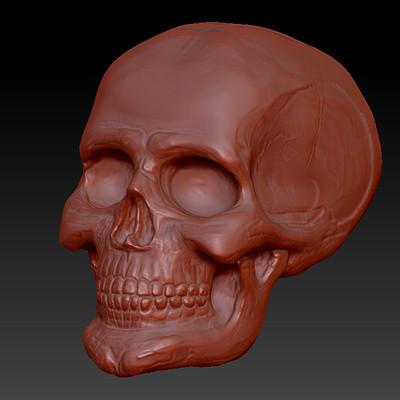 Laura garcia skull