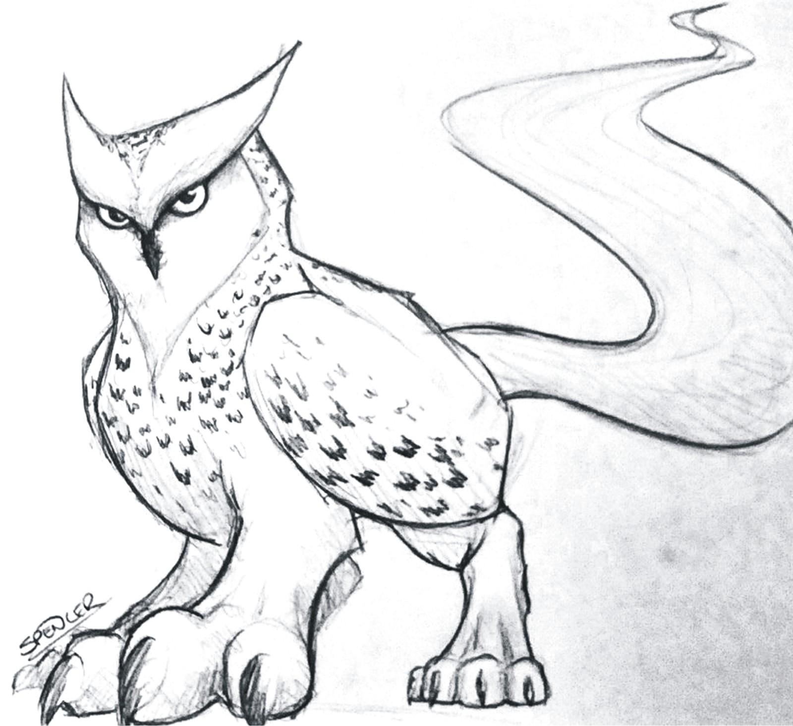 Spencer ford owlon
