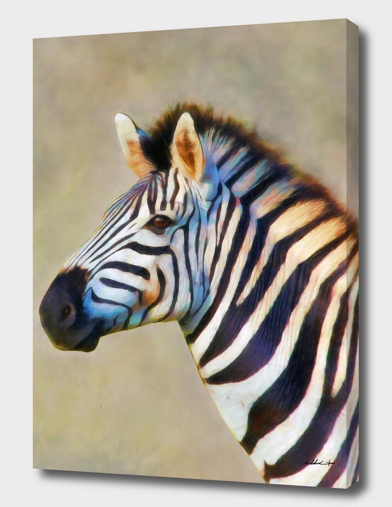 Eddie christian the zebra canvas