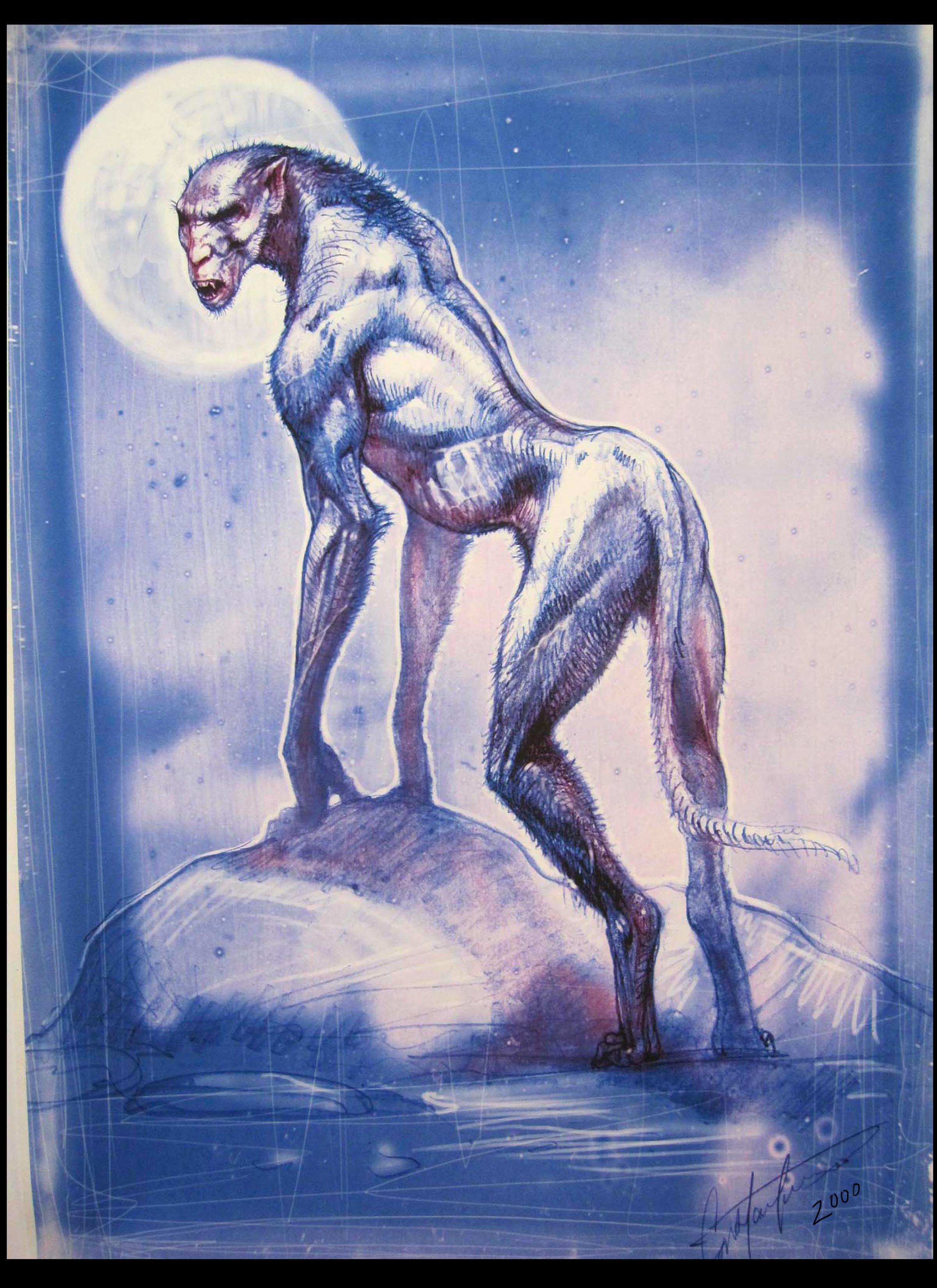 werwolf fantasy creature design scetch