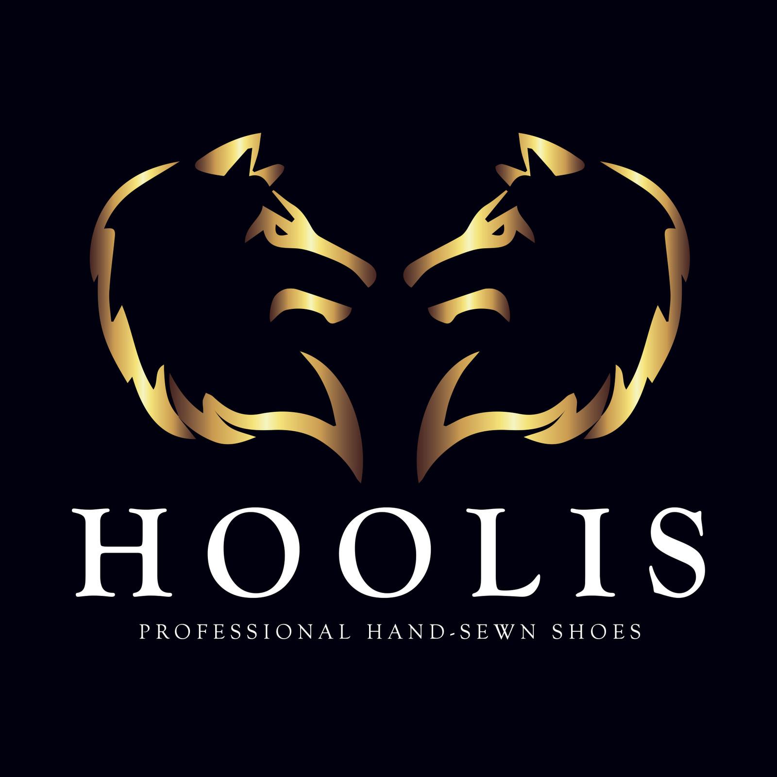 Hoolis Project