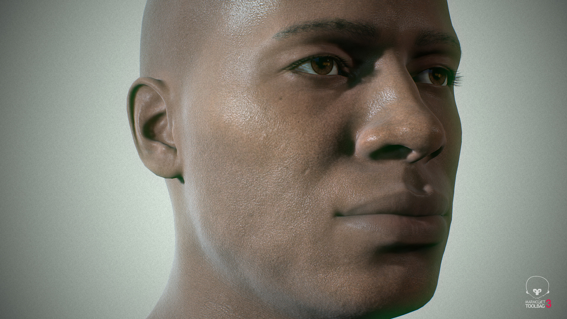 Alex lashko averageblackmale by alexlashko marmoset 14
