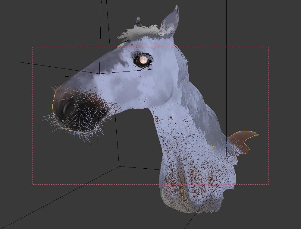 Anais barbeau sanction horse 01